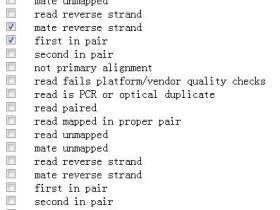 推荐一个SAM文件中flag含义解释工具