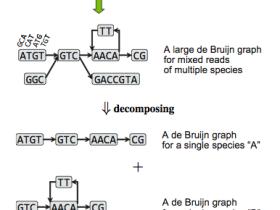MetaVelvet: a short read assember for metagenomics