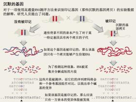最新研究质疑RNA测序数据的统计分析