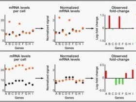 全基因表达分析标准方法存在重大缺陷