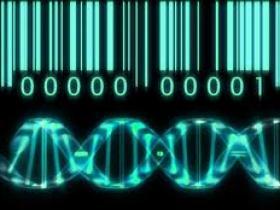 测序,生物信息分析那点小事