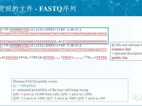 FASTQ格式解释和质量评估