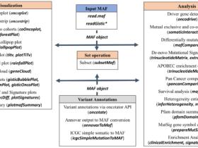 肿瘤变异数据分析和可视化工具maftools:安装和文件格式要求